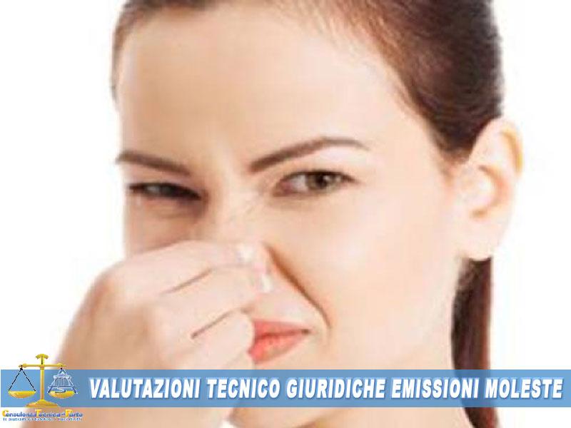 perizia cattivi odoridiffida per cattivi odoricome denunciare odori molesti